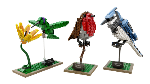 lego-ideas-21301-Birds